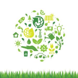 Biobränsle kommer blir en mer och mer viktigt bränslekälla